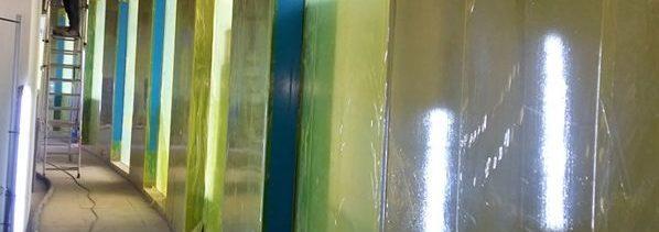 Film temporaire protection de surface vitrées