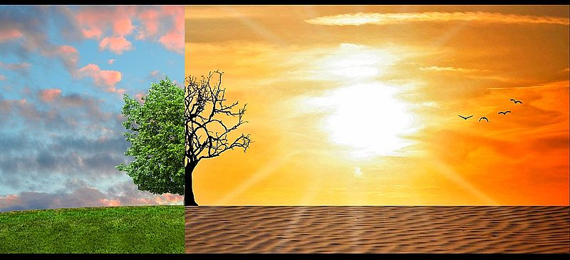 les diff rents films solaires anti chaleur anti uv dexypro film pour fenetre et vitrage. Black Bedroom Furniture Sets. Home Design Ideas